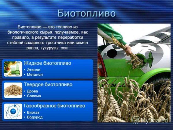 Разное биотопливо