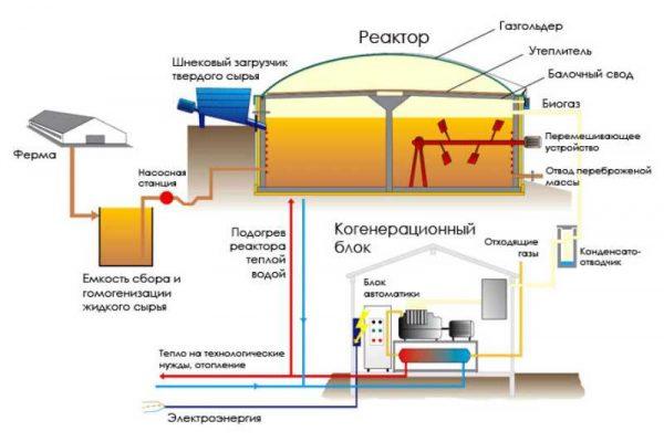 Получаем биогаз